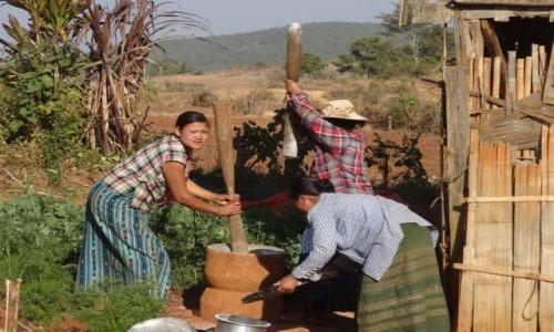 Zdjecie MYANMAR / Shan / treking z Kalaw nad Inle / młyn