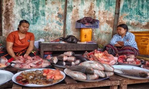 MYANMAR / prowincja Mandalay / Bagan / Taaaka ryba