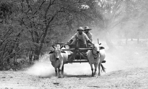 Zdjecie MYANMAR / brak / W drodze do YANGON / Birmańska taksówka