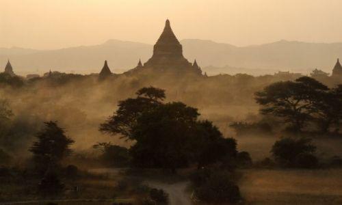 Zdjecie MYANMAR / myanmar / Bagan / kurz nad Bagan