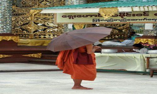 MYANMAR / brak / Yangon (Rangun) / Kolejny mnich w Shwedagon Paya