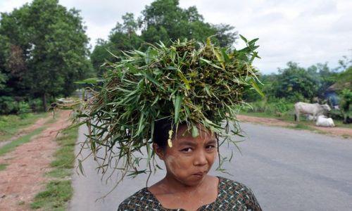 Zdjecie MYANMAR / brak / między Yangonem a Bago / Birmanka rzujaca betel..