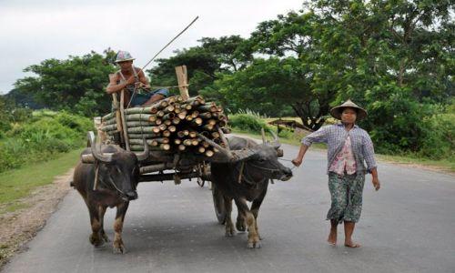Zdjecie MYANMAR / brak / Gdzieś między Bago a Inle Lake / Jeden z popularniejszych srodkow transportu :)