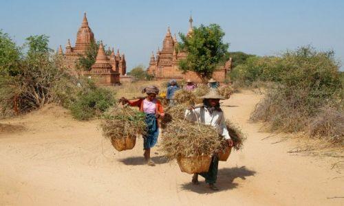 Zdjecie MYANMAR / brak / Bagan / kolejny dzień w Birmie