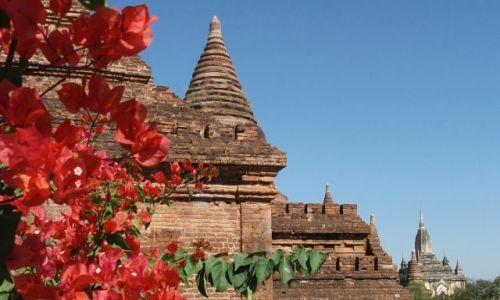 Zdjęcie MYANMAR / Pagan / Pagan / ... odcienie ...