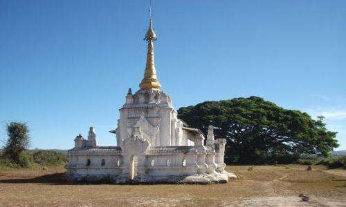 Zdjęcie MYANMAR / Okolice jeziora Inle / gdzieś pomiędzy Kalaw a Nyaungshwe / ... z drzewem Buddy w tle ...