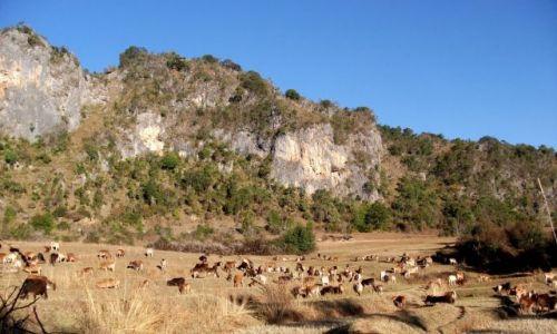 Zdjęcie MYANMAR / Okolice jeziora Inle / gdzieś pomiędzy Kalaw a Nyaungshwe / ... zachód... dziki zachód ...
