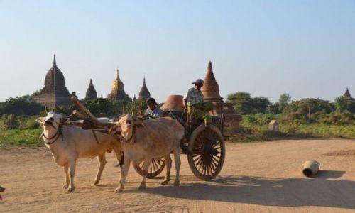 Zdjecie MYANMAR / - / Bagan / Popołudniowa wy