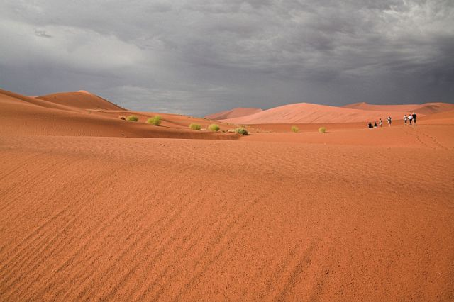 Zdjęcia: jedna z wydm, chyba największa, Pustynia Namib, Nanib, NAMIBIA