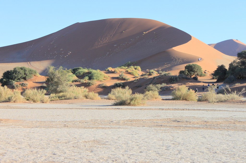 Zdjęcia: Deadvlei, Sosussvlei, Deadvlei I, NAMIBIA