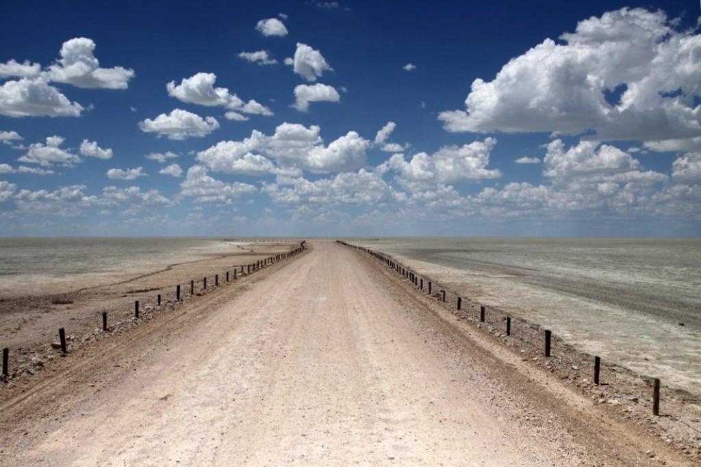 Zdjęcia: Etosha Plain, Etosha National Park, Droga do zapomnienia, NAMIBIA