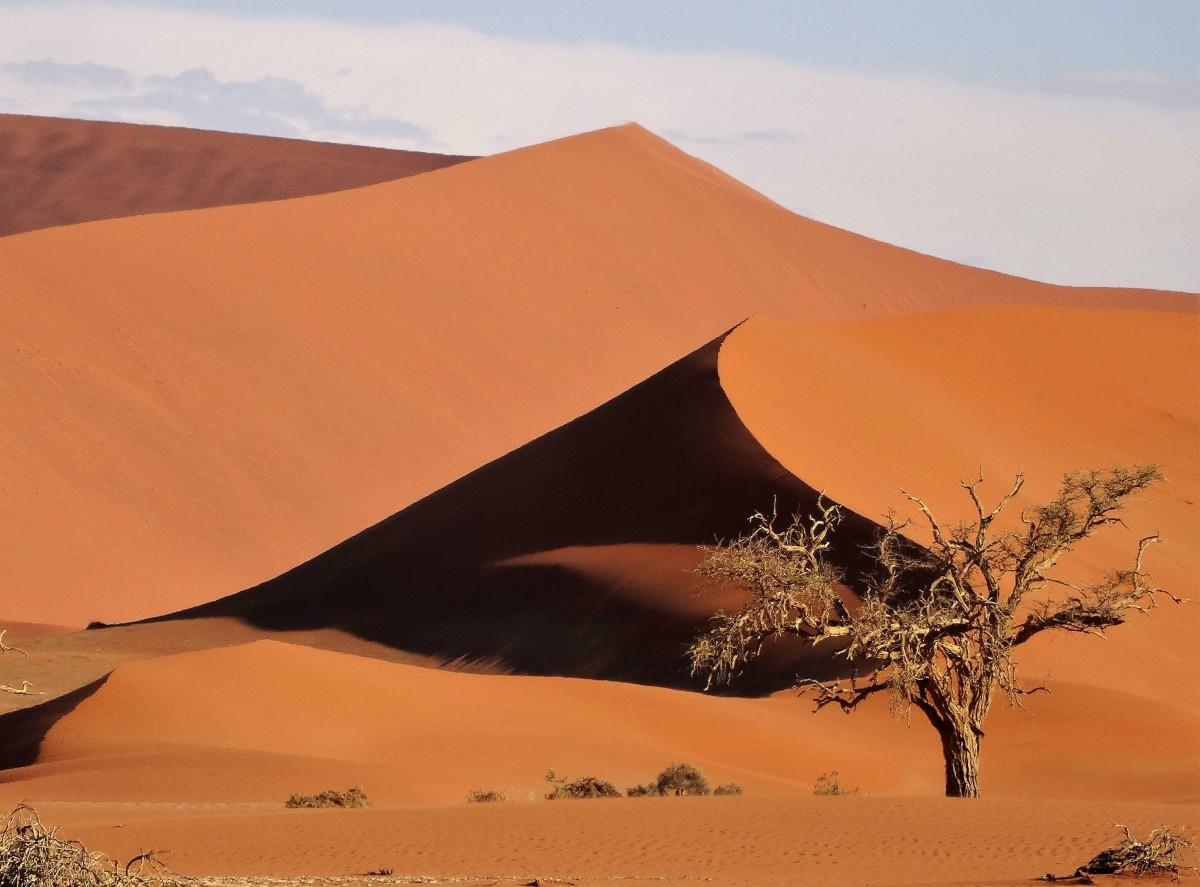 Zdjęcia: Park Narodowy Namib Naukluft, Pustynia Namib, Późne popołudnie na pustyni Namib, NAMIBIA