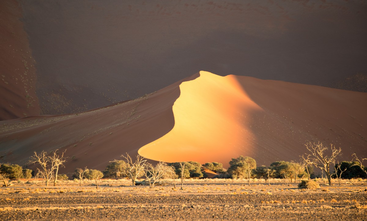 Zdjęcia: Namibia, Namibia , Namibia, NAMIBIA