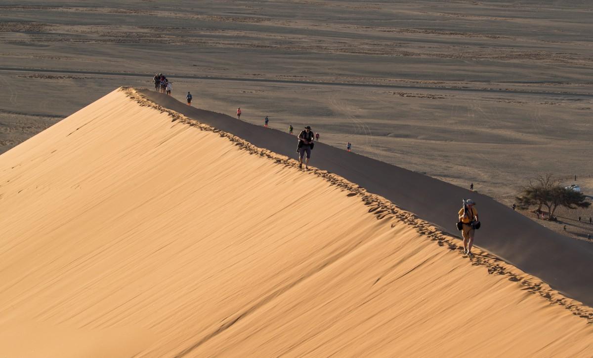 Zdjęcia: Wydma 45, Park Narodowy Namib Naukluft, Namibia, NAMIBIA