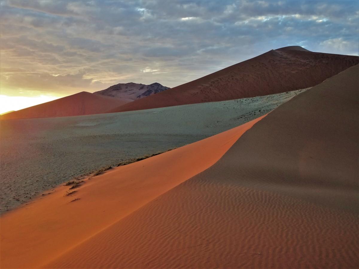 Zdjęcia: pod wydmą 45, Park Narodowy Namib Naukluft, Wschód słońca na pustyni Namib, NAMIBIA