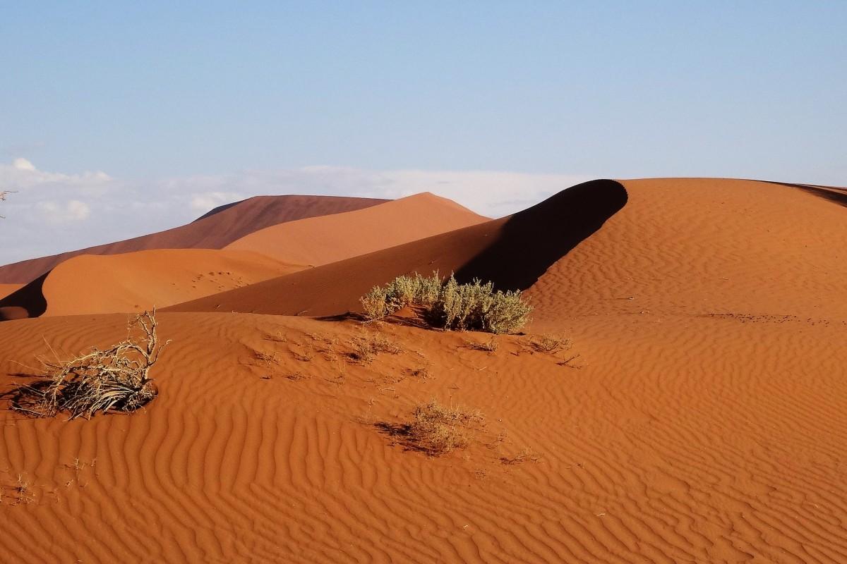 Zdjęcia: Pustynia Namib, Park Narodowy Namib Naukluft, Kolory pustyni w promieniach zachodzącego słońca, NAMIBIA