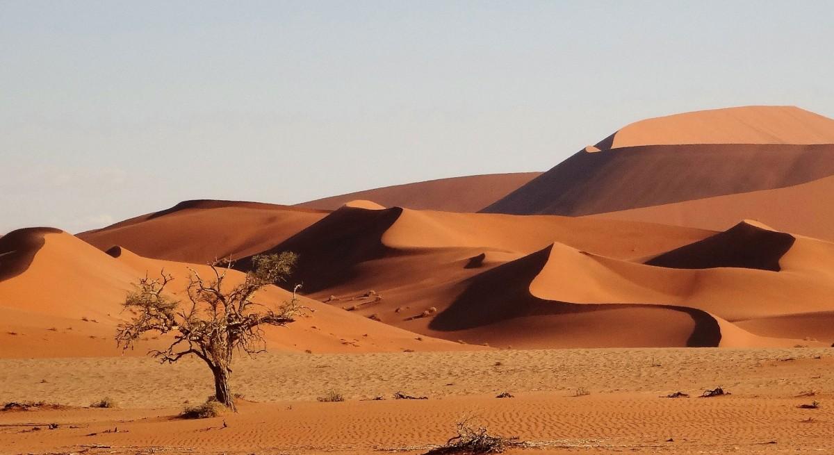 Zdjęcia: Pustynia Namib, Park Narodowy Namib Naukluft, Malownicze zawijasy, które nieustannie mnie zachwycają, NAMIBIA