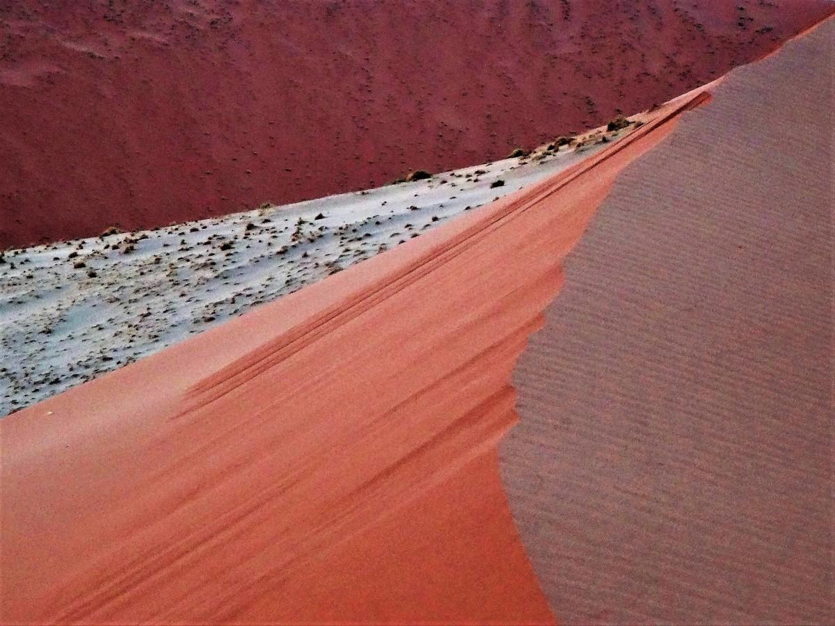 Zdjęcia: okolice wydmy 47, Pustynia Namib, Kolory piasku o wschodzie słońca, NAMIBIA