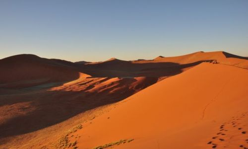 Zdjecie NAMIBIA / Namib Naukluft / Sossusvlei /  Dune 45