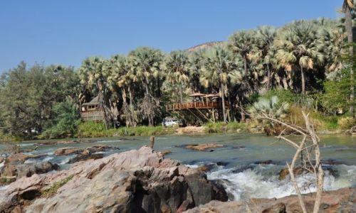 Zdjęcie NAMIBIA / Kunene / Epupa Falls / Konkurs - Pod palmami