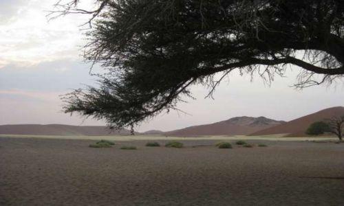 Zdjecie NAMIBIA / Pustynia Namib / W / Świt nad pustynią