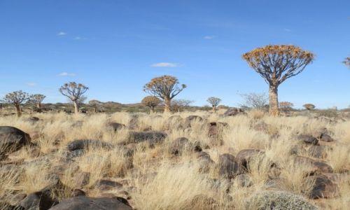 Zdjecie NAMIBIA / Południe / Rzeka Fish / Pustyno-skalny widok