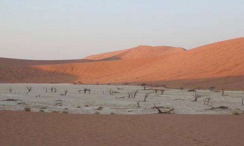 Zdjecie NAMIBIA / Pustynia Namib / Namib / Dolina śmierci w cieniu