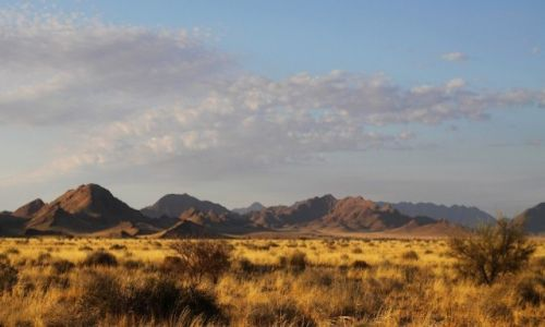 NAMIBIA / Namib Naukluft / Namib Naukluft / Pustynia Namib