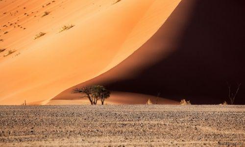 Zdjecie NAMIBIA / Namib-Naukluft / Namib-Naukluft / pustynia Namib