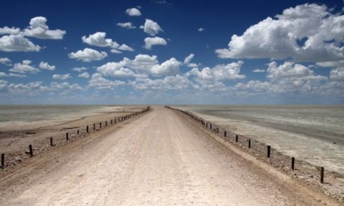Zdjecie NAMIBIA / Etosha National Park / Etosha Plain / Droga do zapomn
