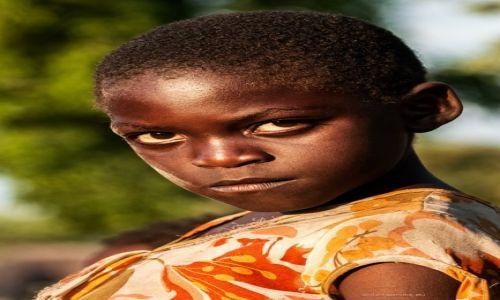 Zdjęcie NAMIBIA / Okawango / Okawango / młoda gniewna