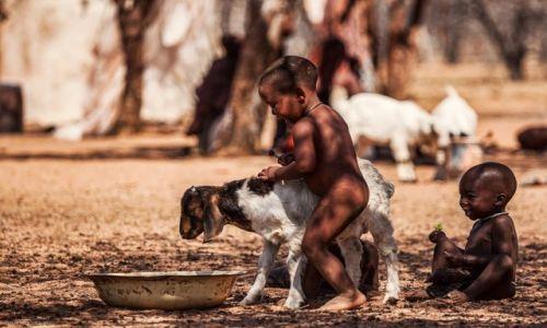 Zdjecie NAMIBIA / Kunene / Himba Village / dla Seni
