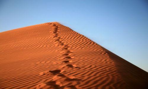Zdjęcie NAMIBIA / sossusvlei / sossusvlei / sossusvlei