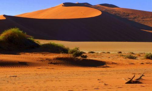 Zdjecie NAMIBIA / Wybrze�e Szkieletowe / Pustynia Namib / Wiatrem malowan