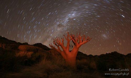 Zdjęcie NAMIBIA / Brandberg / Brandberg / Brandberg nocą