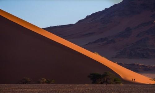 Zdjecie NAMIBIA / Pustynia Namib  / Sossusvlei / Dune 45