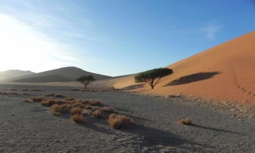 Zdjecie NAMIBIA / Soususvlei / Dune 45 / Dune 45