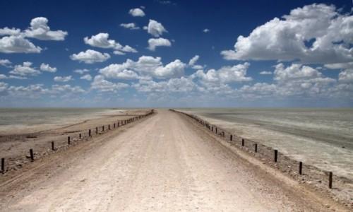 Zdjecie NAMIBIA / Etosha National Park / Etosha Plain / Droga do zapomnienia