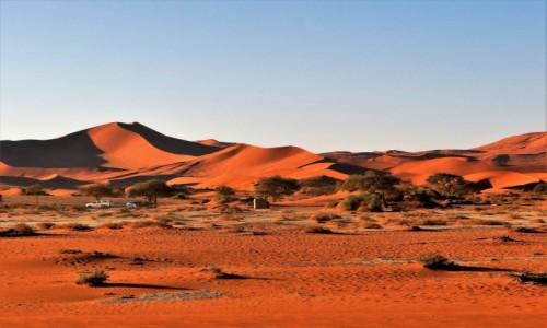 Zdjecie NAMIBIA / - / Namib / Pustynia