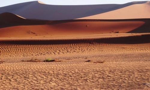 Zdjęcie NAMIBIA / Pustynia Namib / Park Narodowy Namib Naukluft  / Faktury