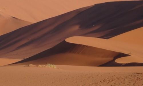Zdjęcie NAMIBIA / Pustynia Namib / W drodze do Sossusvlei / Późne popołudnie na pustyni Namib