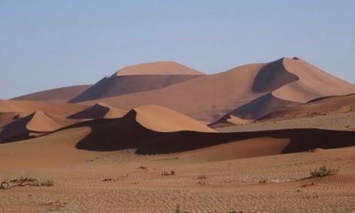 Zdjęcie NAMIBIA / Pustynia Namib / Park Narodowy Namib Naukluft / Namib o zachodzie słońca - panorama