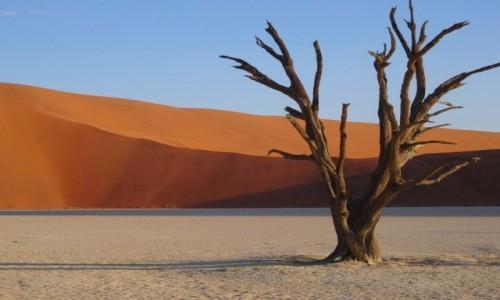 Zdjecie NAMIBIA / Pustynia Namib / Sossusvlei / Poglądowe nieszumiące dla Pawła