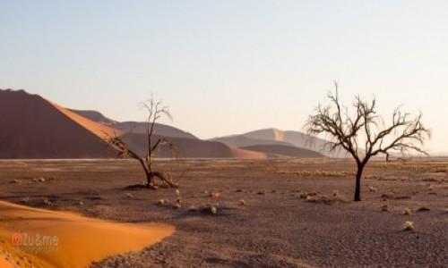 Zdjecie NAMIBIA / Hardap / Sossusvlei / Wydmy o zachodzie słońca