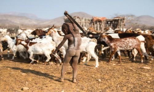 Zdjecie NAMIBIA / Kunene / okolice Epupa Falls / Młody Himba