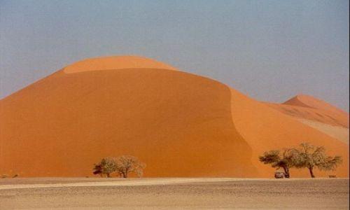 Zdjecie NAMIBIA / Namibia / Pustynia Namib / Czerwone wydmy