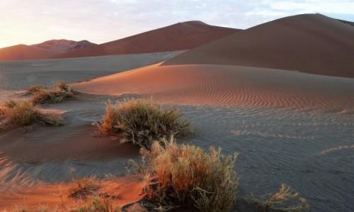 Zdjęcie NAMIBIA / Park Narodowy Namib Naukluft / Pustynia Namib / Kolory wschodu