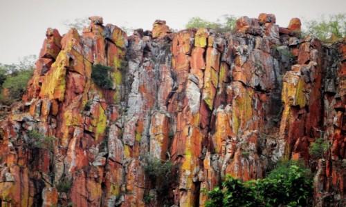 Zdjecie NAMIBIA / Park Narodowy Waterberg / U stóp Płaskowyżu Waterberg / Kolorowy zawrót głowy - miejsce mało znane