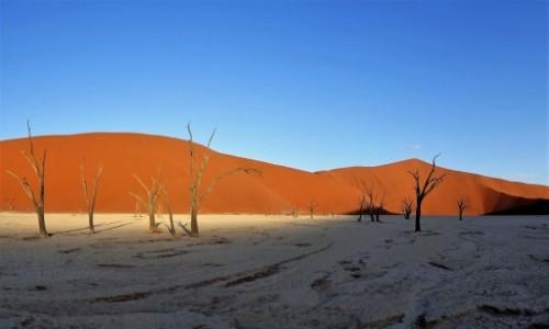 NAMIBIA / Park Narodowy Namib Naukluft / Dead vlei / I słońce, i cień