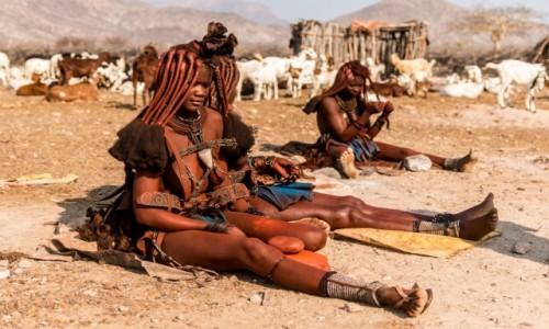 Zdjecie NAMIBIA / Kaokoland / wioska Himba gdzieś po drodze z Epupa Falls do Opuwo / Himba